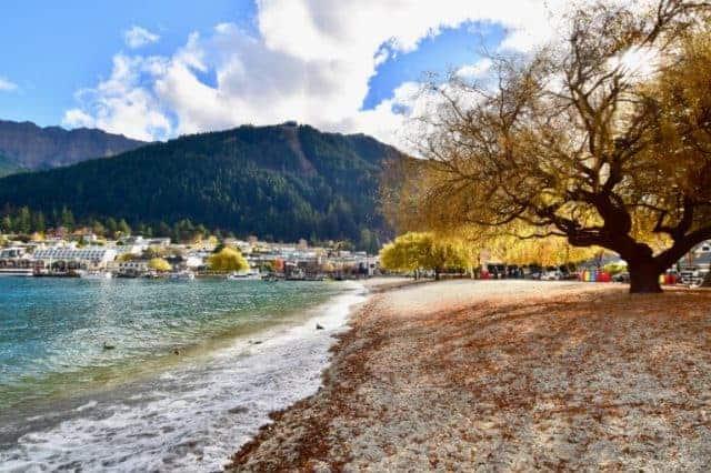 Go for a walk and admire Lake Wakatipu