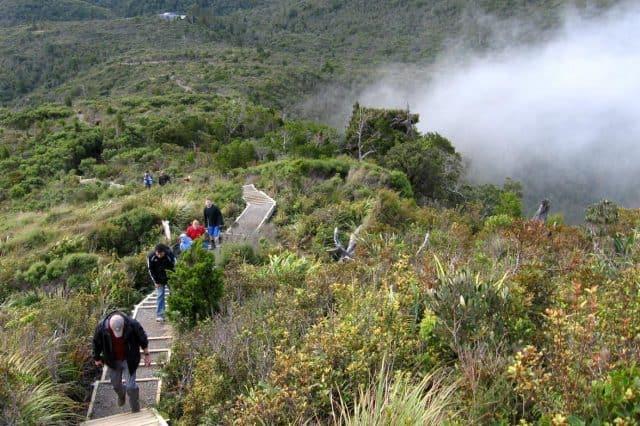Haven Retreat - Whitianga Coromandel, north island, Naked Divorce